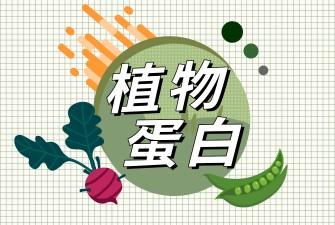 蔬福良品植物蛋白分類