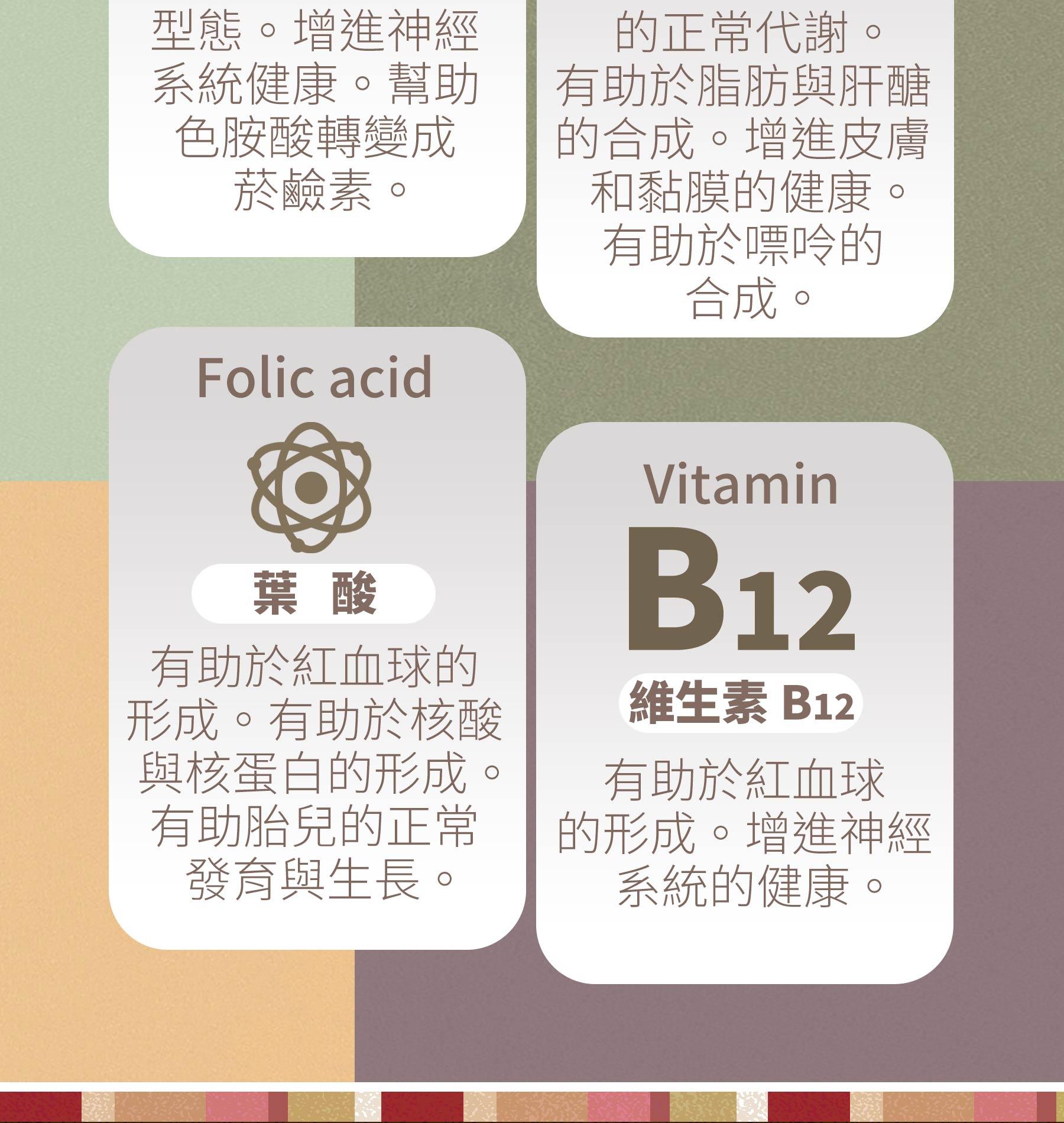 豐富酵母B群含有葉酸,維生素B12